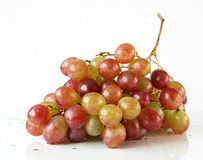 Grapes. On a light background Stock Photos
