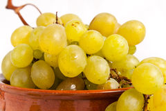 Grapes. Isolated on white background Stock Image