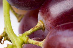 Grapes Stock Image