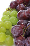 Grapes. Some bunches of grapes on a white background stock images