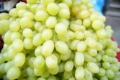 Grapes Royalty Free Stock Image