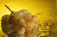 Grapes #3. Grapes and water with ripples Royalty Free Stock Photos