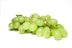 Grapes. Isolated green grapes Stock Image