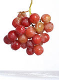 Grapes. A grape is the non-climacteric fruit that grows on the perennial and deciduous woody vines of the genus Vitis. Grapes can be eaten raw or used for making Royalty Free Stock Photo