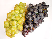 Grapes. Yellow and blue Stock Photo