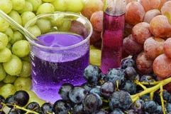 Grapes1 Royalty-vrije Stock Foto