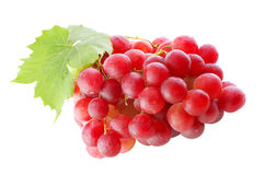 Grapes. Isolated on the white Stock Image