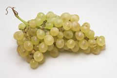 Grapes. Raceme of grapes royalty free stock images