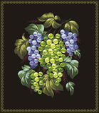 Grapes. Artistic illustration with exciting appetizing grape Stock Photo