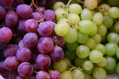 Free Grapes Royalty Free Stock Image - 46997136