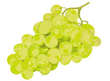 Free Grapes Royalty Free Stock Photos - 4994988