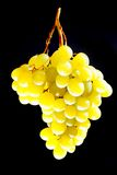Grapes. On the black background Stock Image