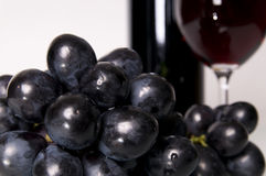 Grapes. royalty free stock images