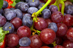Grapes. And Blueberries Royalty Free Stock Photo