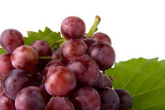 Grapes. Bunch of grapes on the white background Royalty Free Stock Images