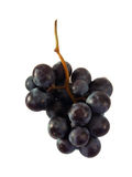 Grapes. Close up of grapes over white background stock photo