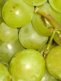 Grapes. Some sweet, tasty, juicy grapes, close up Royalty Free Stock Image