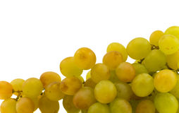 Grapes. Isolated on a white background Royalty Free Stock Photography