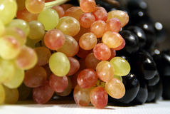 Grapes. Armenian mixed Grapes on white stock image