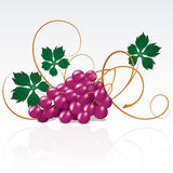 Grapes. With green leaves on a white background royalty free illustration