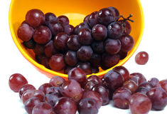 Grapes. Bunch of grapes in a bowl and some grapes out of bunch royalty free stock photo