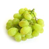 Grapes. Isolated royalty free stock photo
