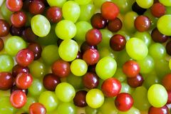 Grapes. Red and green grapes Royalty Free Stock Images