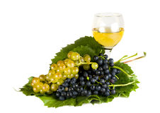 Grapes And Wine Isolated On White Stock Images