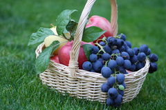 Grapes and apples in the basket Royalty Free Stock Photos