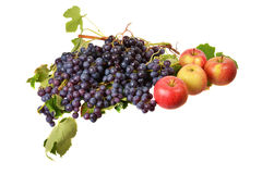 Grapes and apples Stock Images