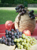 Grapes apples and tank of wine Royalty Free Stock Photo