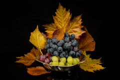 Grapes and autumn leaves Royalty Free Stock Photos