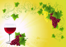 Grapes Background Royalty Free Stock Image