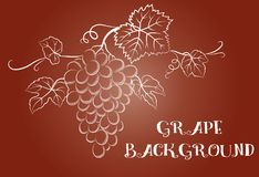 Grapes Background Stock Photo