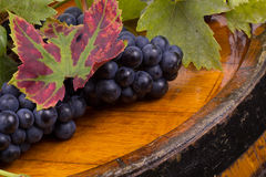 Grapes on barrel. Vintage time Royalty Free Stock Photography