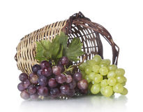 Grapes with basket Stock Images