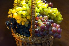 Grapes basket. Basket full of  grapes of different kinds Royalty Free Stock Photos