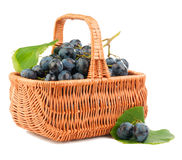 Grapes in a basket. Grapes isolated on white background stock photo