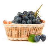 Grapes in a basket. Grapes isolated on white background royalty free stock images