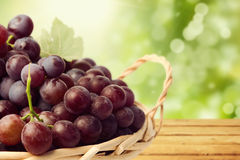 Grapes in basket over nature bokeh background Royalty Free Stock Photography