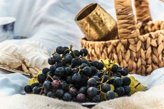 Grapes and a basket on a picnic royalty free stock photo