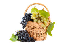 Grapes in basket with vine leaves Royalty Free Stock Photo