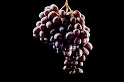 Grapes on black close up Royalty Free Stock Photography