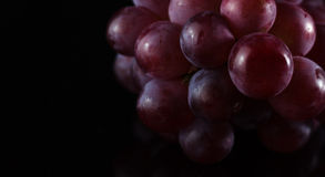 Grapes in Black. A Close Up Shot of Grapes Isolated in Black Background royalty free stock photos