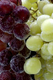 Grapes on black closeup Royalty Free Stock Photography