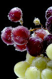 Grapes on black closeup Royalty Free Stock Photo