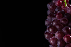 Grapes in BLack. A shot of Grapes in black background placed on the right side royalty free stock photography