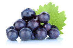 Grapes blue fresh fruits fruit Royalty Free Stock Images