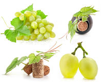 Grapes, bottle and cork. Collection of grapes, bottle and cork, Isolated on white background Stock Image