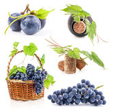 Grapes, bottle and cork. Collection of grapes, bottle and cork, Isolated on white background Stock Photos